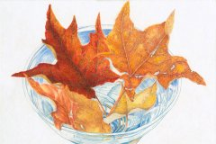 Leaves in Bowl